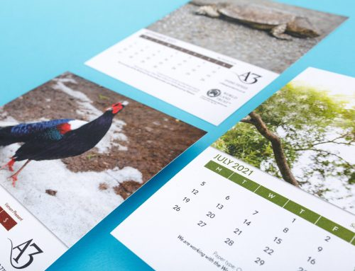 Our Carbon Balanced 2021 Desk Calendar