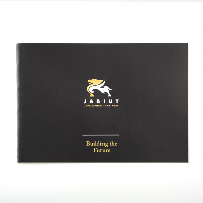 Theme Group<br>Brochure and Envelope